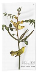 Children's Warbler Beach Sheet by John James Audubon