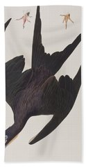 Frigate Pelican Beach Towel by John James Audubon