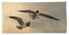 Gliders Beach Sheet by Don Spenner