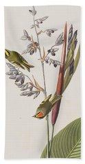 Golden-crested Wren Beach Towel by John James Audubon