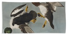 Golden-eye Duck  Beach Towel by John James Audubon