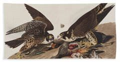 Great-footed Hawk Beach Towel by John James Audubon