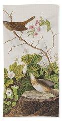 Lincoln Finch Beach Sheet by John James Audubon
