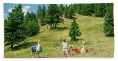 Man Posing With Llamas In A Beautiful Grassy Meadow Beach Sheet by Jerry Voss