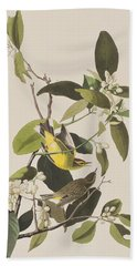 Palm Warbler Beach Sheet by John James Audubon