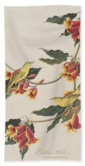Rathbone Warbler Beach Sheet by John James Audubon