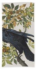 Raven Beach Sheet by John James Audubon