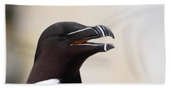Razorbill Portrait Beach Sheet by Bruce J Robinson