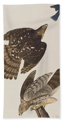 Stanley Hawk Beach Towel by John James Audubon