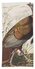 Wild Turkey Beach Sheet by John James Audubon