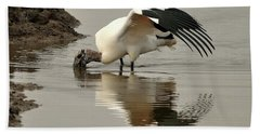 Wood Stork Winging It Beach Sheet by Al Powell Photography USA