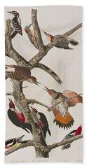 Woodpeckers Beach Towel by John James Audubon