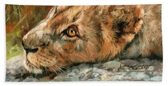 Young Lion Beach Towel by David Stribbling