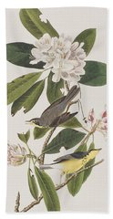 Canada Warbler Beach Sheet by John James Audubon