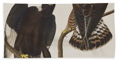 Rough-legged Falcon Beach Towel by John James Audubon