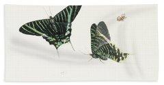 Studies Of Two Butterflies Beach Sheet by Anton Henstenburgh