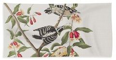 Downy Woodpecker Beach Towel by John James Audubon
