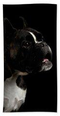 Purebred Boxer Dog Isolated On Black Background Beach Towel by Sergey Taran