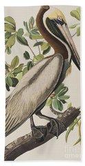 Brown Pelican  Beach Towel by John James Audubon