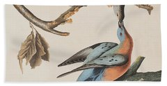 Passenger Pigeon Beach Towel by John James Audubon