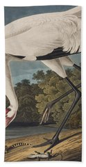 Whooping Crane Beach Towel by John James Audubon
