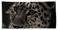 Amur Leopard Beach Sheet by Martin Newman