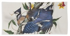 Blue Jay Beach Sheet by John James Audubon