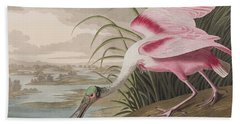 Roseate Spoonbill Beach Towel by John James Audubon