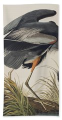 Great Blue Heron Beach Sheet by John James Audubon