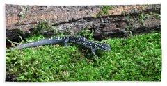 Slimy Salamander Beach Sheet by Ted Kinsman