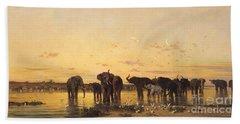 African Elephants Beach Sheet by Charles Emile de Tournemine