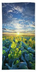 All Joined As One Beach Towel by Phil Koch