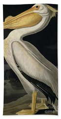 American White Pelican Beach Towel by John James Audubon