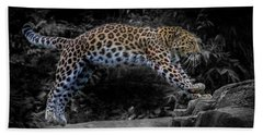 Amur Leopard On The Hunt Beach Sheet by Martin Newman