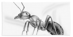 Ant Beach Towel by Greg Joens