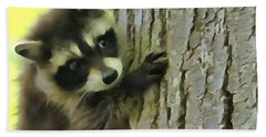 Baby Raccoon In A Tree Beach Towel by Dan Sproul