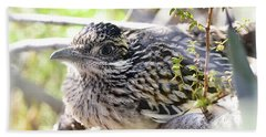 Baby Roadrunner  Beach Towel by Saija Lehtonen