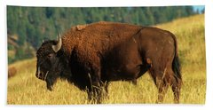 Bison Bull In The Late Evening Magic Light Beach Sheet by Jerry Voss