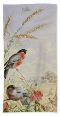 Bullfinches In A Harvest Field Beach Sheet by Harry Bright