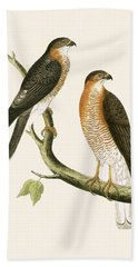 Calcutta Sparrow Hawk Beach Towel by English School
