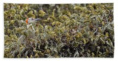 Camouflaged Red-bellied Woodpecker Beach Towel by Carolyn Marshall