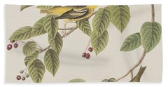 Carbonated Warbler Beach Sheet by John James Audubon