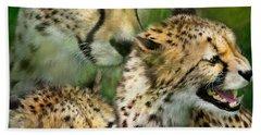 Cheetah Moods Beach Sheet by Carol Cavalaris
