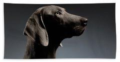 Close-up Portrait Weimaraner Dog In Profile View On White Gradient Beach Towel by Sergey Taran
