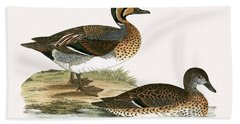 Clucking Teal Beach Towel by English School