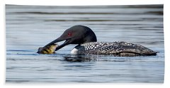 Common Loon Square Beach Sheet by Bill Wakeley