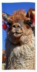 Como Se Llama Beach Towel by Skip Hunt