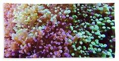 Living Reef Beach Sheet by Bri Lou