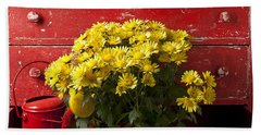 Daisy Plant In Drawers Beach Sheet by Garry Gay