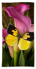 Dogface Butterfly On Pink Calla Lily  Beach Towel by Garry Gay